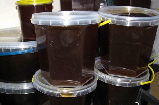 гречишный мёд польза  и вред