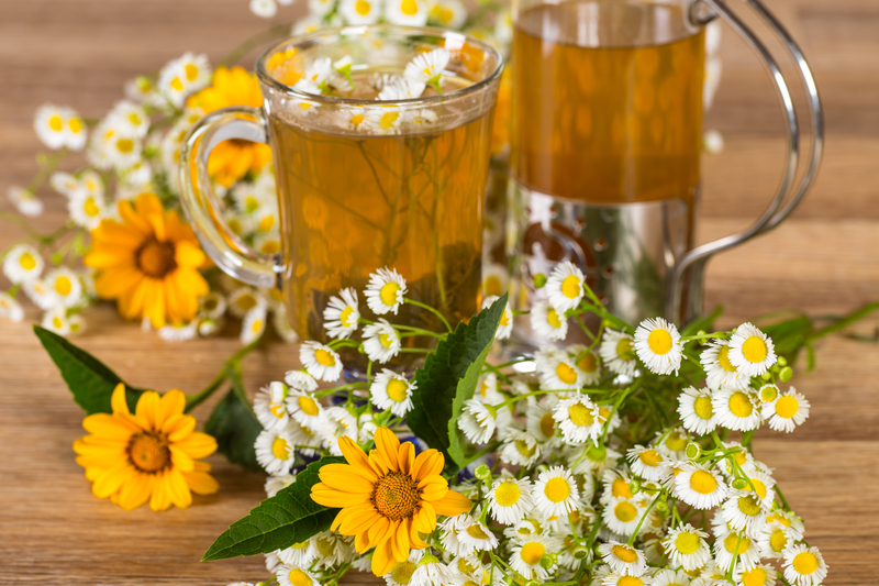 ромашковый чай польза и вред