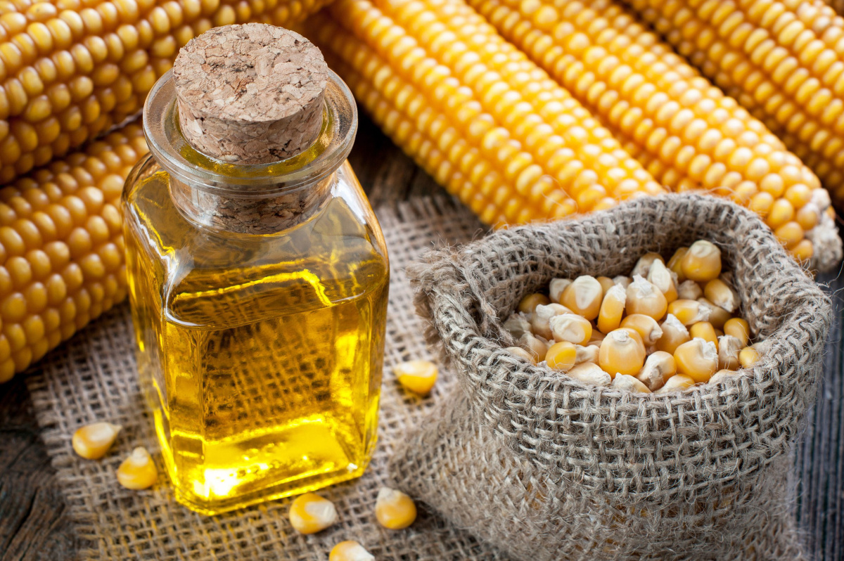 Кукурузное масло: польза и вред, применение в кулинарии и 14