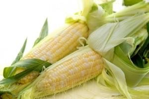 кукурузные рыльца польза и вред