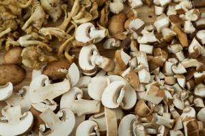 грибы польза и вред