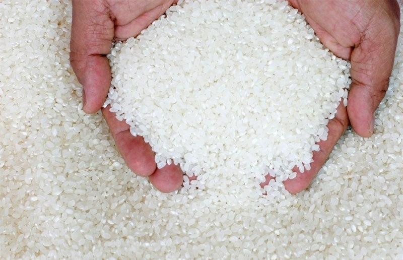 во сне видеть много риса к чему кареток неинтегрированной осью