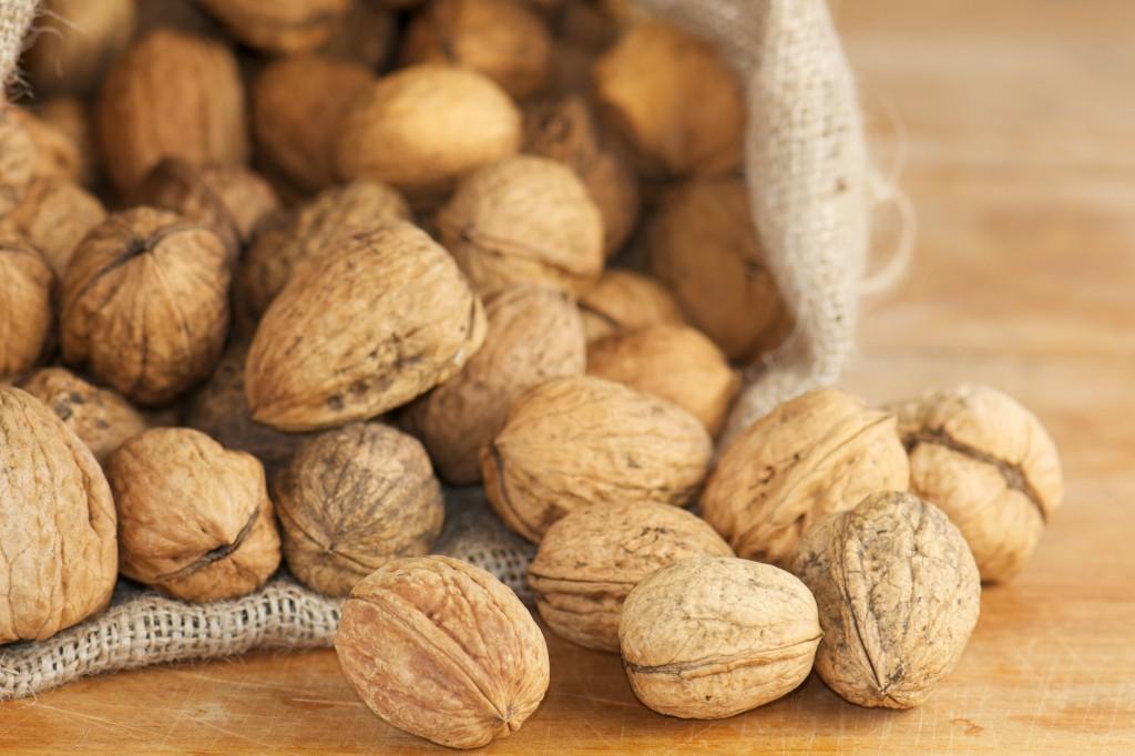 Грецкие орехи - польза и вред для организма мужчин и женщин, применение масла грецкого ореха, лечебные свойства и противопоказан