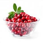 Cranberries_08-150x150-1