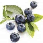 blueberries_08-150x150