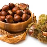 chestnuts_02-150x150