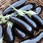 eggplant_02-150x150