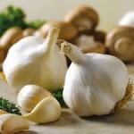 garlic_03-150x150