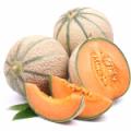 melon_06-150x150