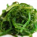 seaweed_06-150x150