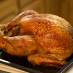 turkey_meat_02-150x150