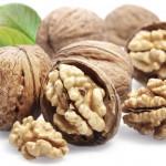 walnuts_09-150x150