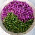 willow-herb_01-150x150