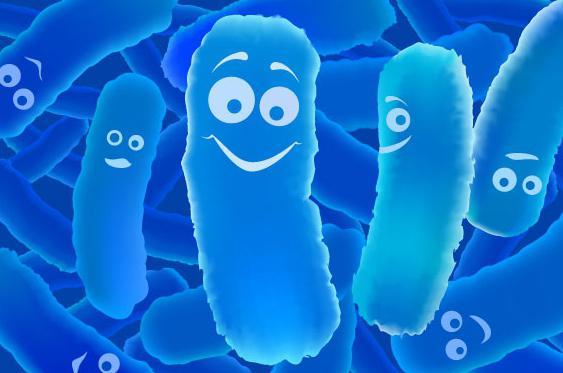Башкирские ученые вывели полезную для урожая бактерию